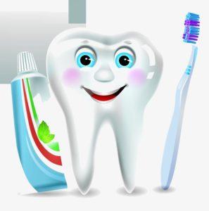 المعجون ليس له أي دور في حماية الأسنان من التسوس
